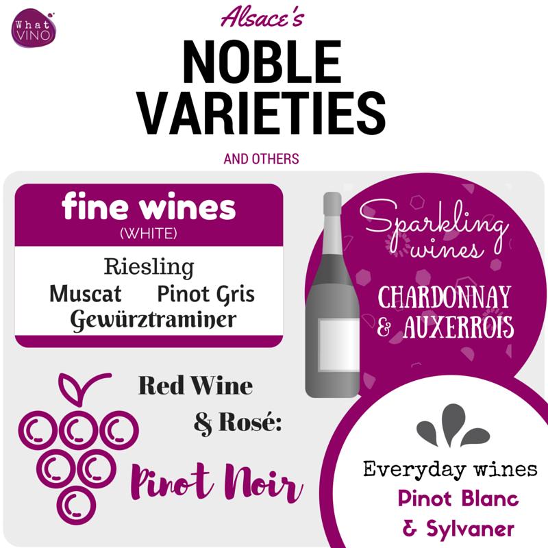 alsace wine region varieties in What VINO Wine Regions