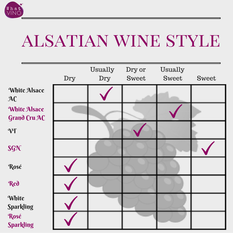 Alsace Wine region Style in What VINO Wine Regions